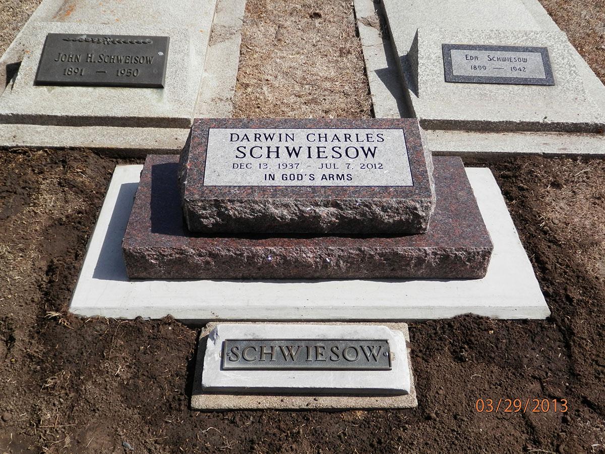 Schwiesowdarwin13